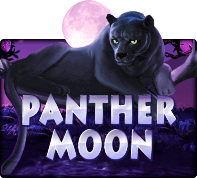 xoslot Panthermoon - SLOTXO
