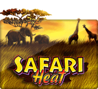 xoslot Safari Heat - SLOTXO